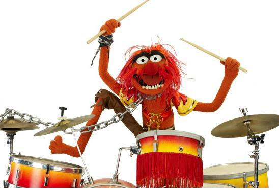 Animal-on-the-drums.jpg